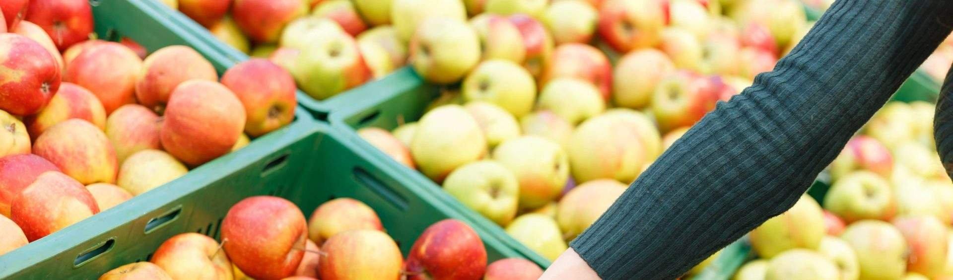 alimentação saudável mais barata