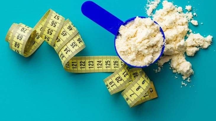 whey protein ou proteína vegetal