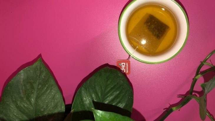 bebida refrescante com chá tecnonutri