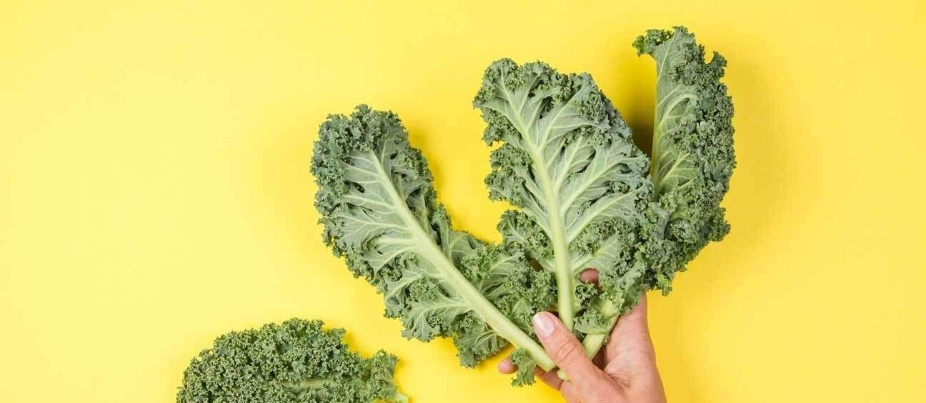 alimentos pulmão