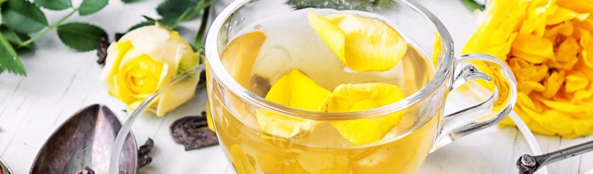 chá de honeybush