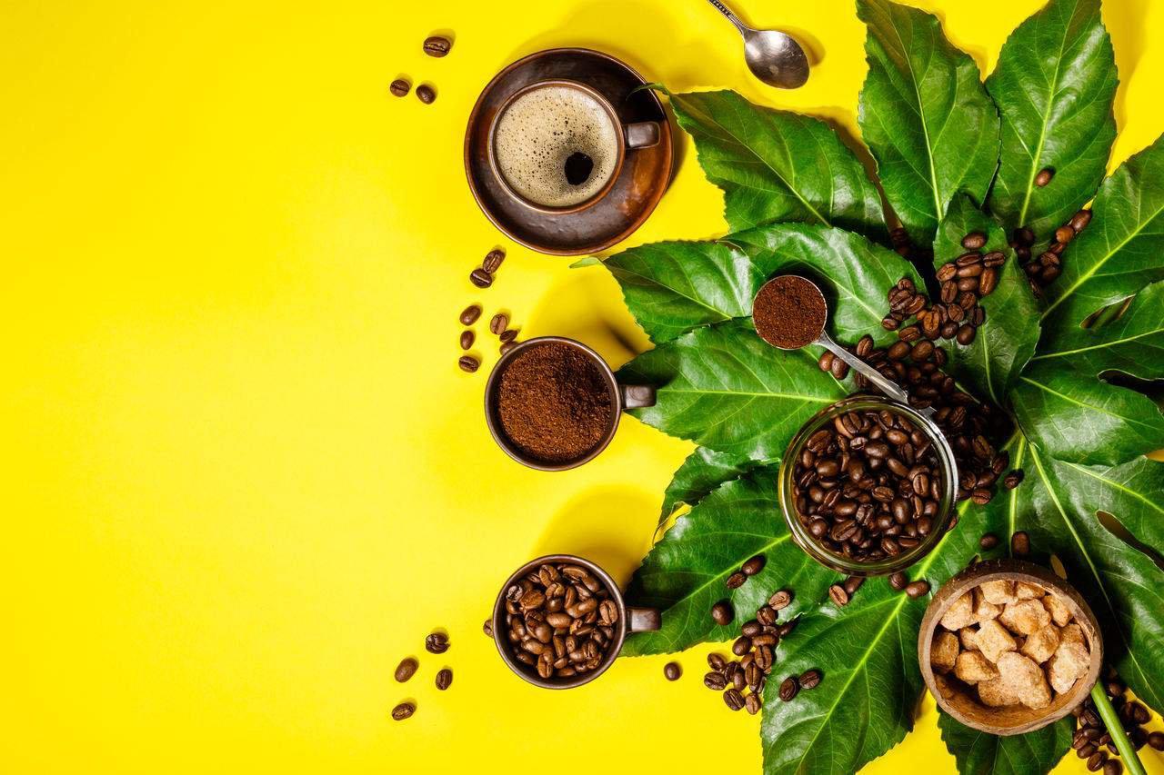 beber café no jejum