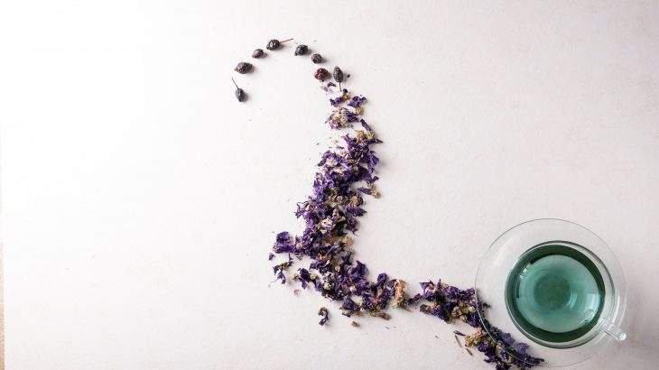 chá azul
