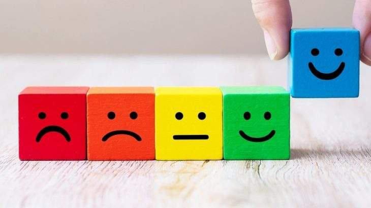 roda das emoções