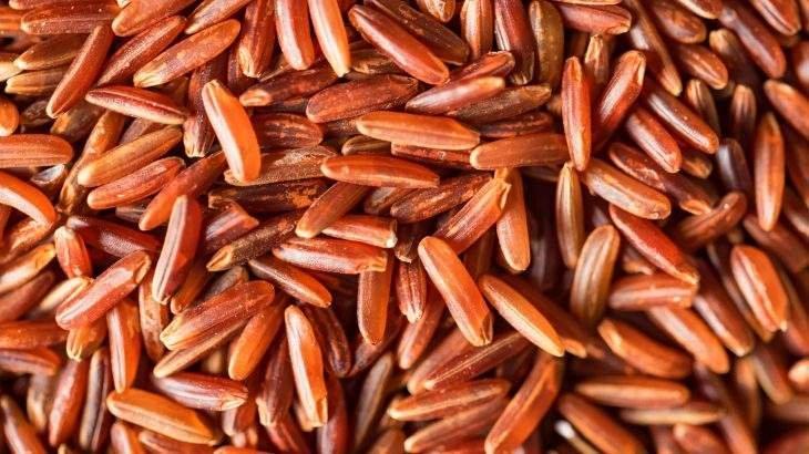 fermento de arroz vermelho