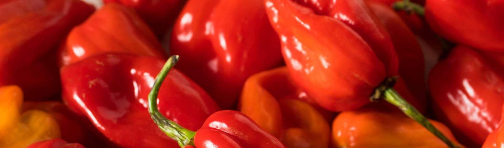 pimenta cumari