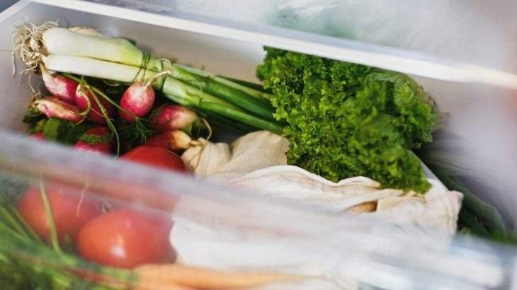 como guardar folhas na geladeira